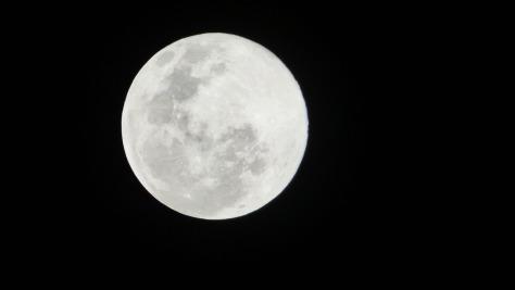 Blue Moon - July 31, 2015